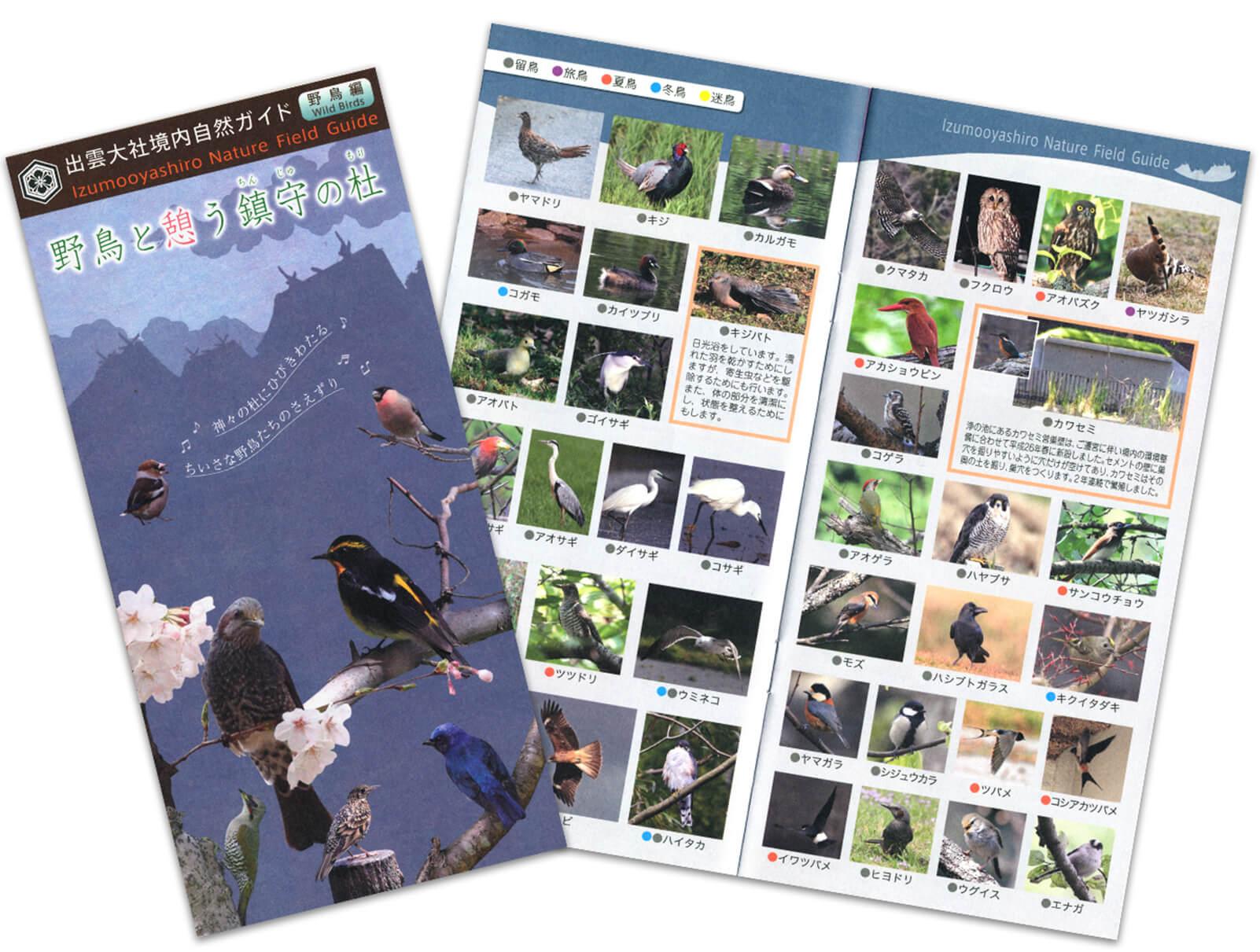 出雲大社-野鳥と憩う鎮守の杜パンフレット