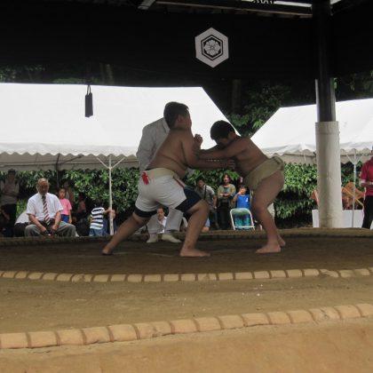 第3回野見宿禰わんぱく相撲大会出雲場所