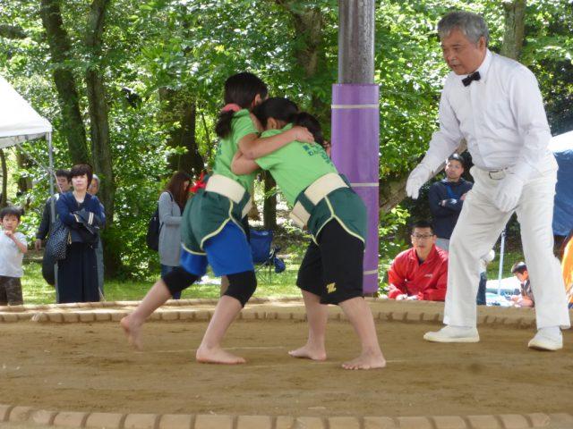 第4回野見宿禰わんぱく相撲大会出雲場所