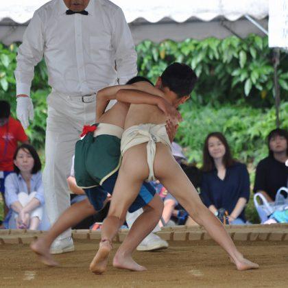 第5回野見宿禰わんぱく相撲大会